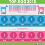 Top Dog 2013 Rover Com S Most Popular Dog Names