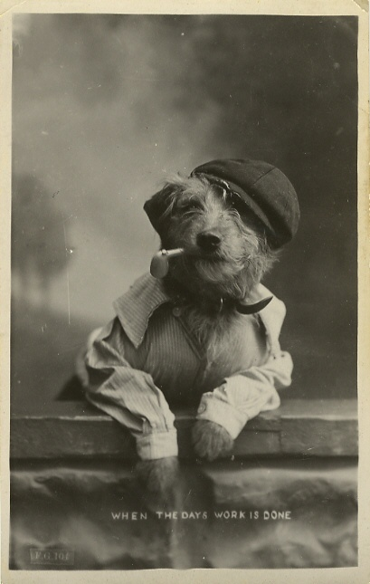 Pre Lolcat 13 Adorable Vintage Dogs In Costume Rover Blog