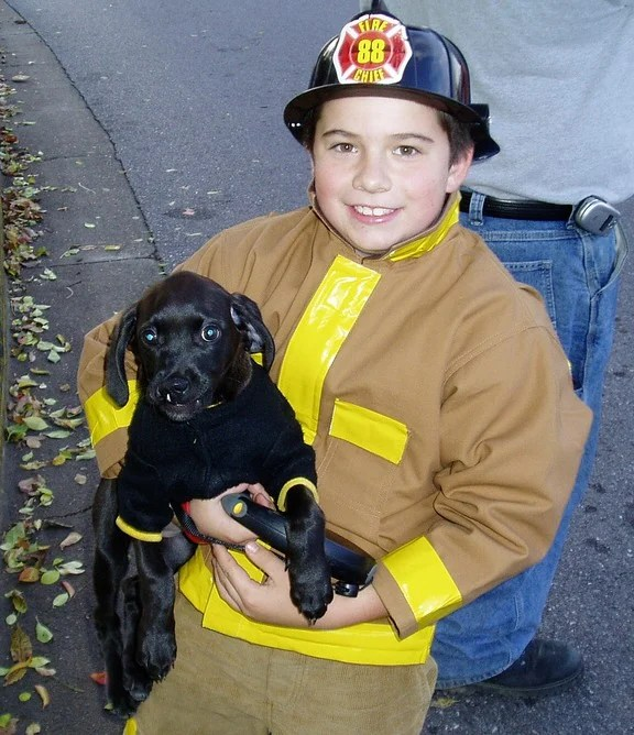 pet fire safety includes practicing with family members