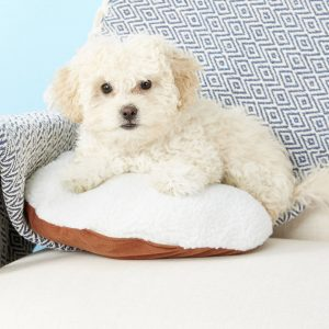 small dog beds the best small dog