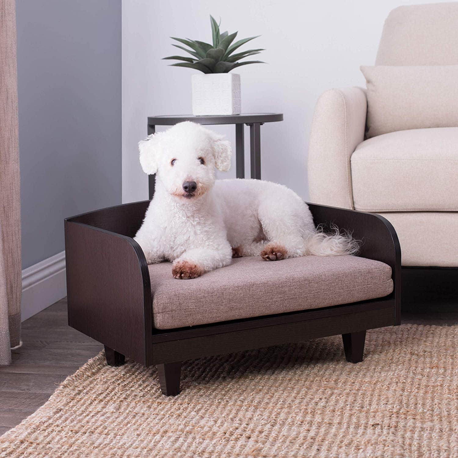 Our 6 Favorite Elevated Dog Beds For 2019 The Dog People By Rover Com
