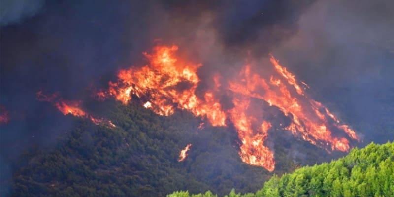 Δέκα αβάσταχτα κλισέ που λένε οι κυβερνήσεις για τις πυρκαγιές