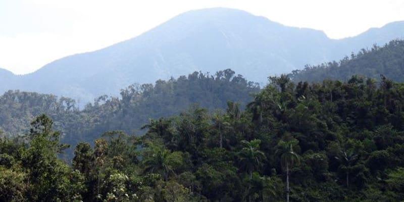 Η Κούβα τριπλασίασε τα δάση της ενώ ο Αμαζόνιος καίγεται