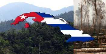 Η Κούβα τριπλασίασε τα δάση της ενώ η Ελλάδα φλέγεται