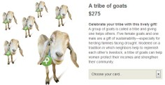 Oxfam Herd Goats Donation Gift Oxfam