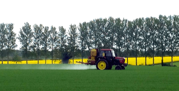 Tractor and Rapeseed in Norfolk