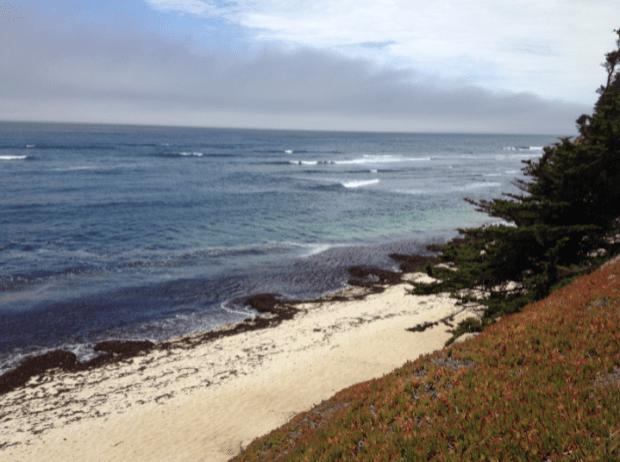 Fitzgerald Marine Reserve Half Moon Bay California