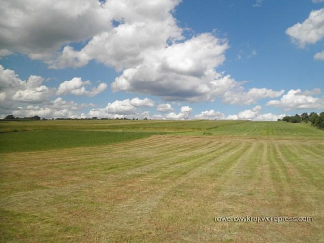 pole, pole, łyse pole... Choć tu chyba łąka :D