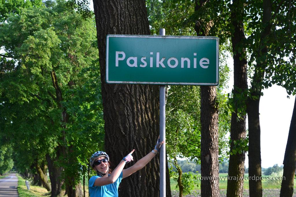 Basia Pasik w Pasikoniach!
