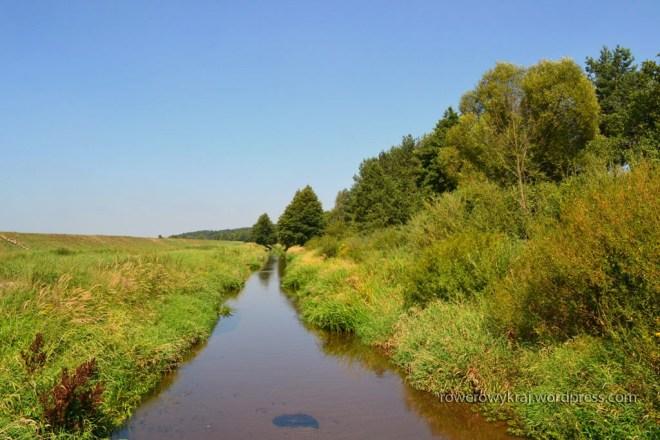 Łośna (Wierna Rzeka)