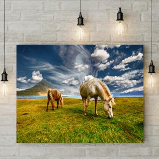 Windswept Grazing Horses