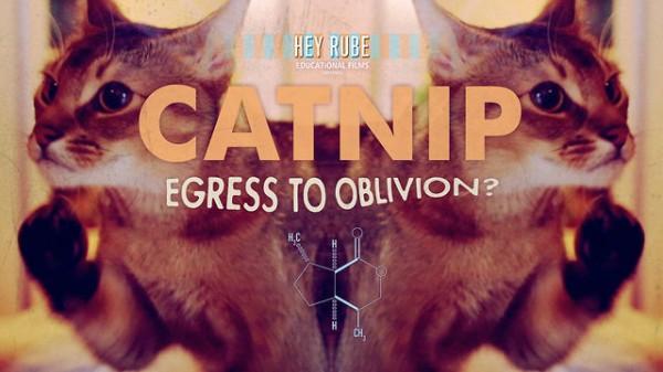 Catnip: Egress to Oblivion? - Drug Educational Film Spoof