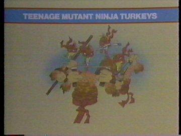 Teenage Mutant Ninja Turkeys