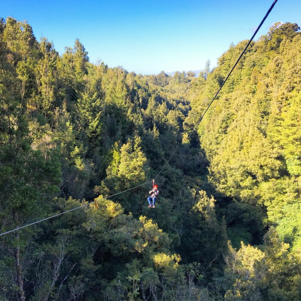 Rotorua Canopy Tours Zip-line
