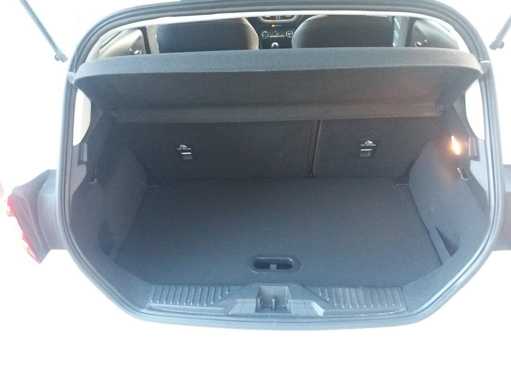 Ford Fiesta Vignale 1.5 TDCi 85 cv 5p (17)
