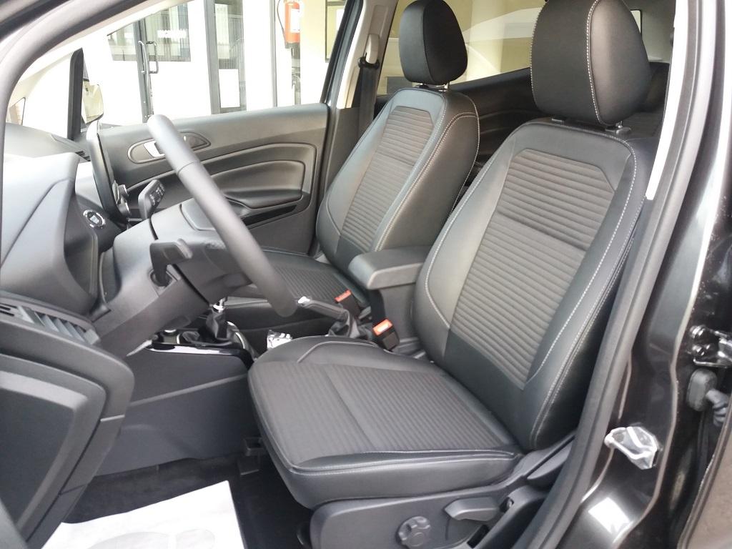 Ford EcoSport 1.5 TDCi EcoBlue 100 cv S&S Titanium (11)