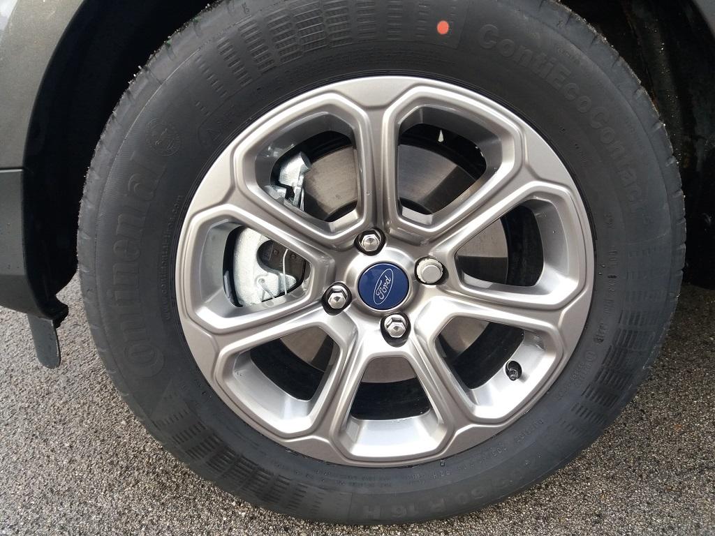Ford EcoSport 1.5 TDCi EcoBlue 100 cv S&S Titanium (19)