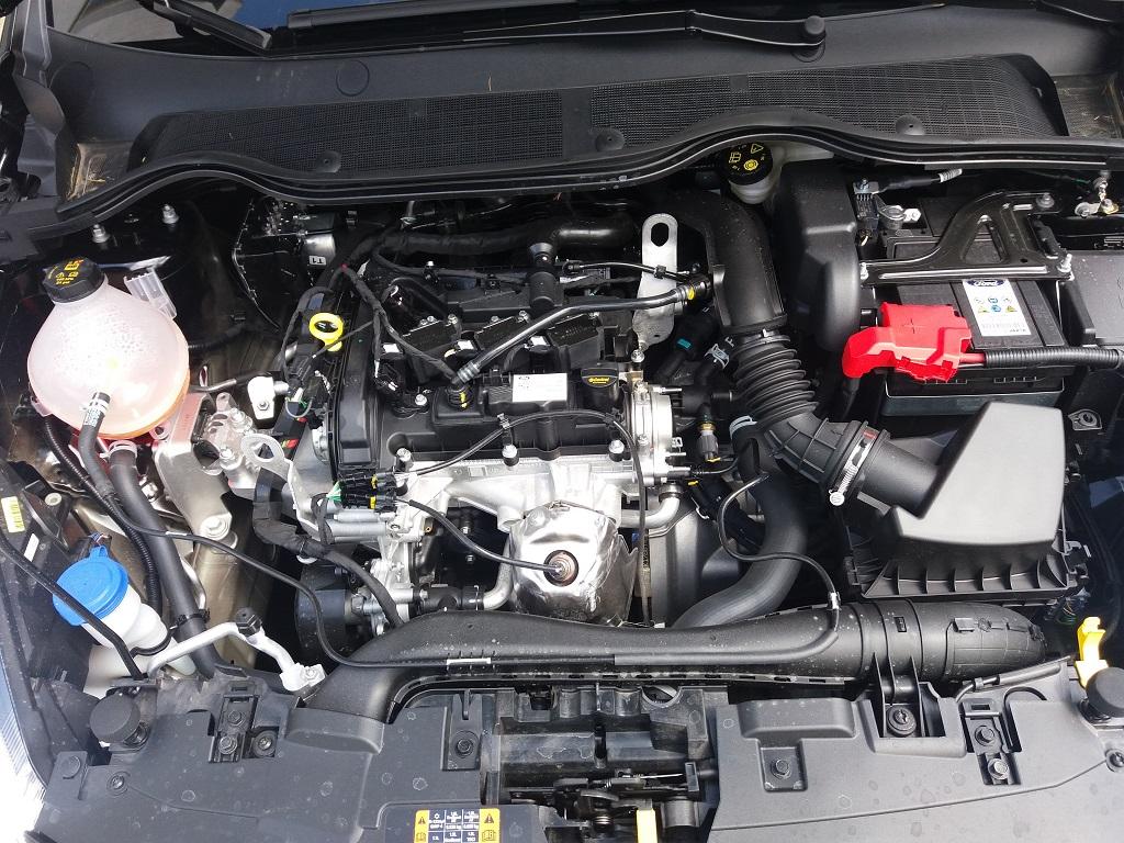 Ford Fiesta ST-Line 1.1 85 cv 5p (39)
