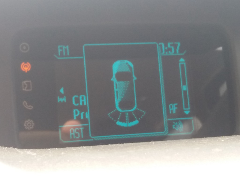Ford EcoSport 1.5 TDCi 90 cv Titanium (42)