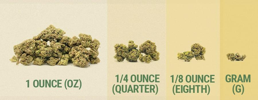 weed weights, understanding cannabis weights