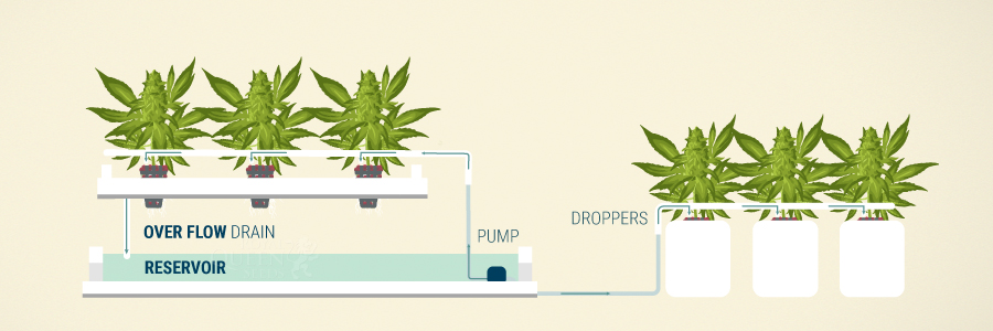 点滴灌漑システム
