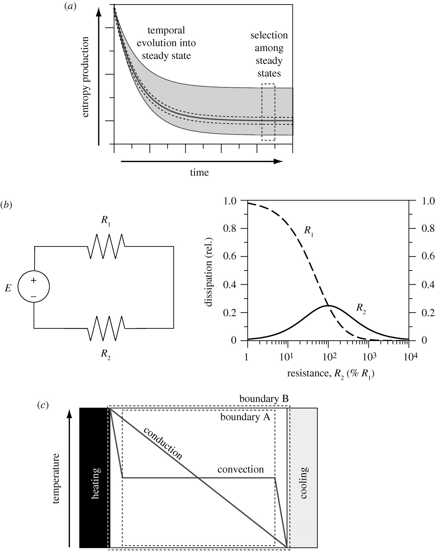 Maximum Entropy Production In Environmental And Ecological