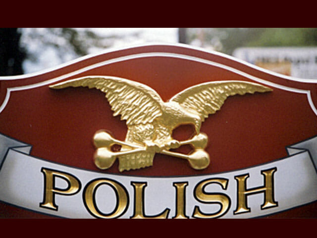 polish-falcons2