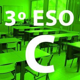 3º Eso C IES Las Rozas 1