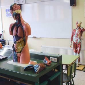 Biología y geología IES Las Rozas 1