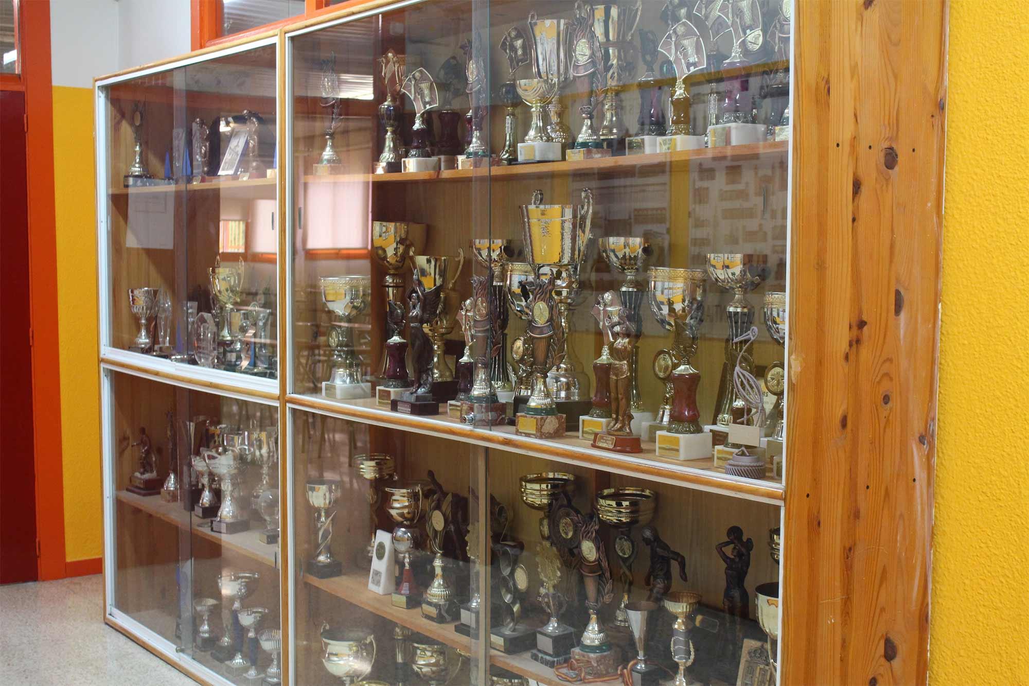 Trofeos IES Las Rozas 1
