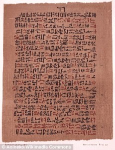 Najdłuższy papirus medyczny to odkryty na nekropoli tebańskiej Papirus Ebersa. Zawiera ponad 800 wskazówek na leczenie chorób oczu oraz problemy trawienne.