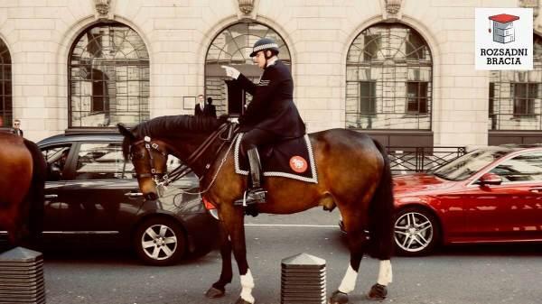 rozsadnibracia.pl-london-policeman-horse