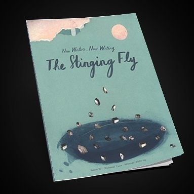 I have a story in the Stinging Fly magazine Winter edition 2017. I've been sending stories to them for 6 years so I am ultra excited to be in there! This issue is themed on Housing and Homelessness and is available to buy for €12.95 in Ireland and €15.95 for rest of the world. My story is called Pokey - out wire and I can reveal the story does contain a pokey-out wire.