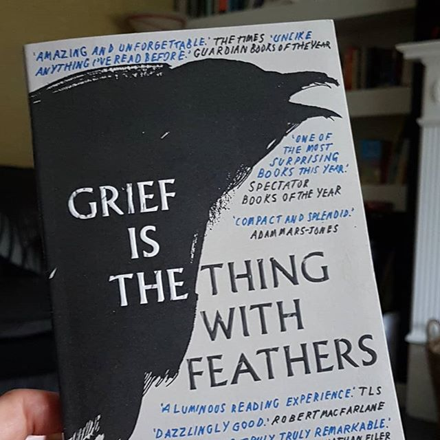 Books are gorgeous but this book is just divine. The illustrations, the cover, the inset, the feel.. Oh and the writing! I attended the talk on with Max Porter, Cillian Murphy and Enda Walsh at Borris 2018. A cosy, creative chat was had. All the lads seemed to connect within their work on the stage adaption of this novella. It was about the book, the writing and I admired the way Cillian Murphy refused to take the attention away from the author.