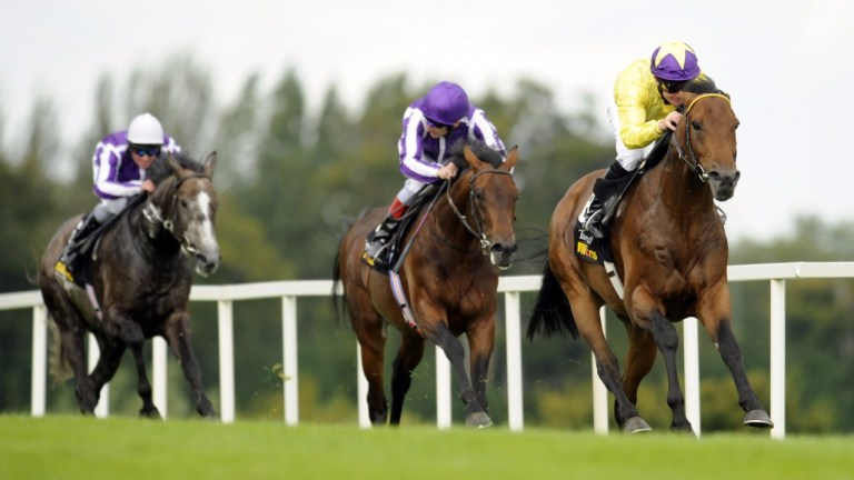 Why we should scrap all two-year-old races and begin at ...