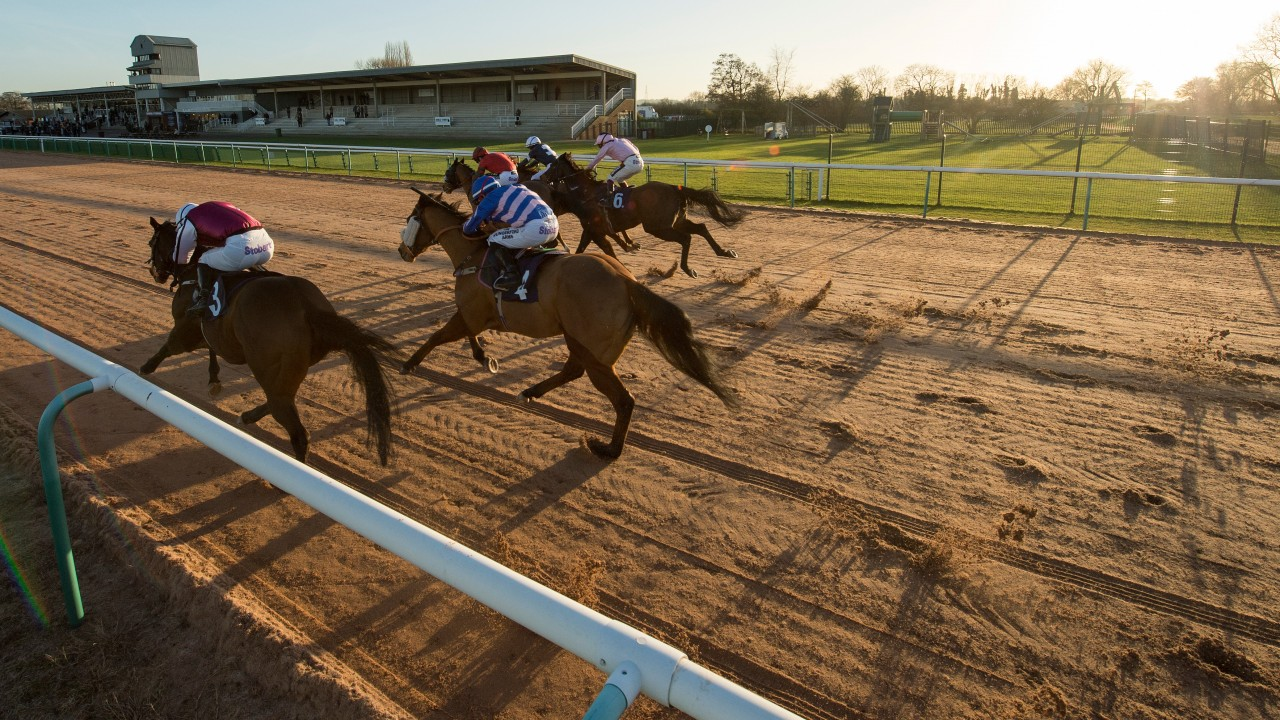 Image result for horse racing southwell