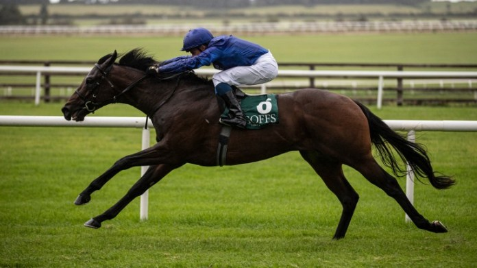 Pinatubo and William Buick annihilate the Goffs Vincent O'Brien field