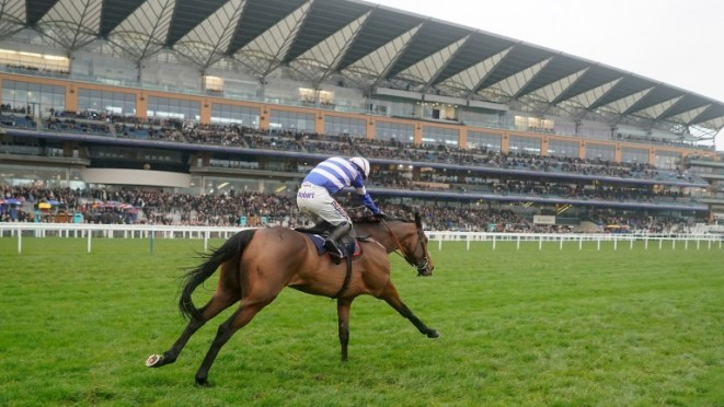 Ascot: passed its inspection, with the first race on Betfair Ascot Chase due off at 1.15pm
