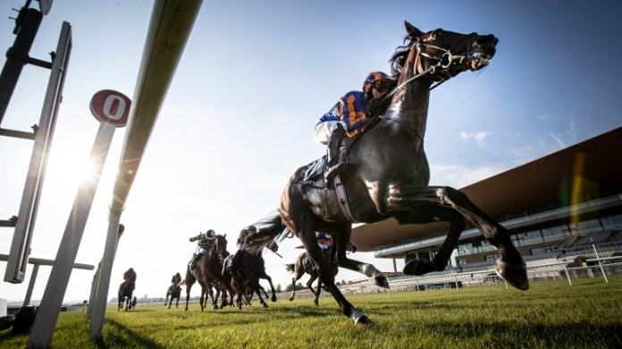 Royal Ascot could be next for Peaceful, despite the rapid reversal of the situation