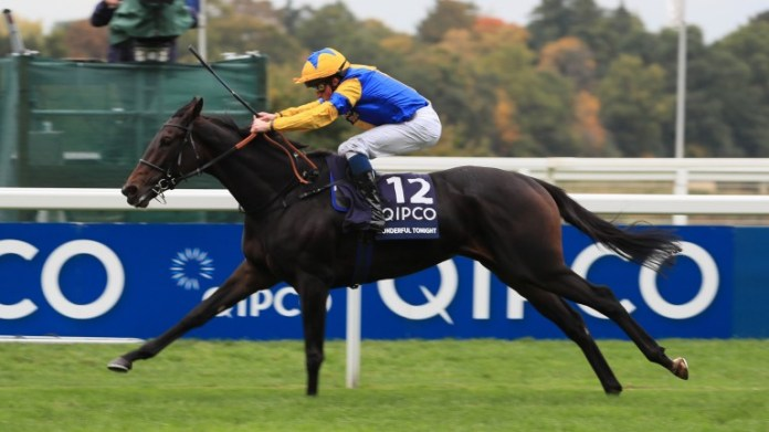 Wonderful Tonight: one of the five Group / Grade 1 winners by Le Havre