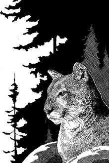 The Art of W Fraser Sandercombe: Sentinel Cat