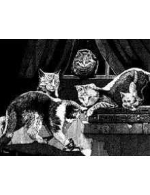 The Art of W Fraser Sandercombe: Seer Cats