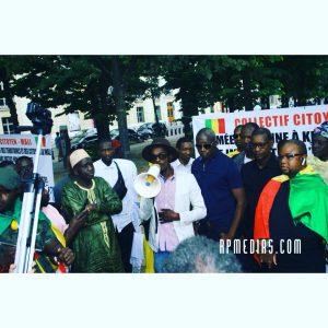 les maliens de France