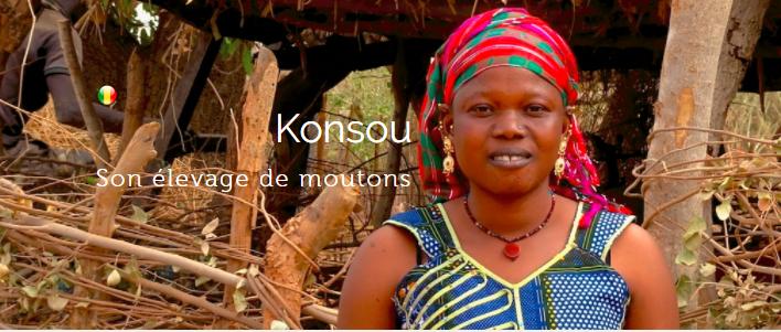 Babyloan Mali finance les projet ruraux au Mali