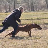 Trénink Polnička 8.3.2014 – proběhlá akce