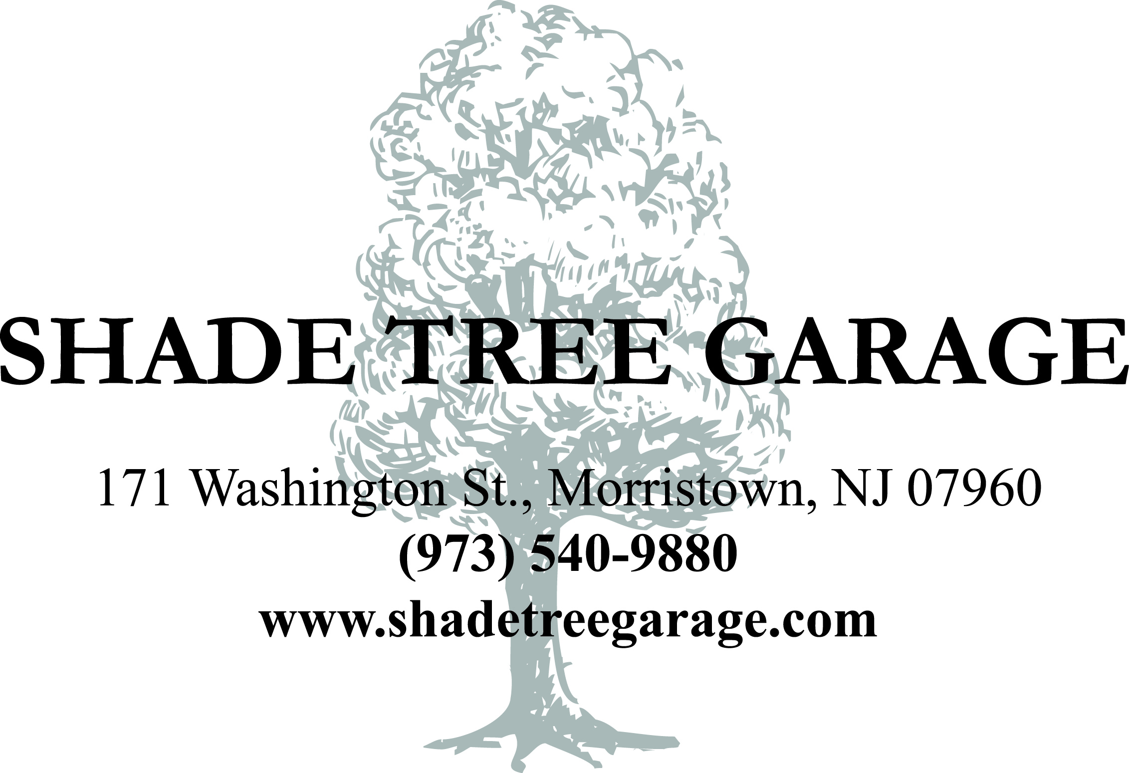 Shade Tree Garage