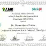 Thomas Miklos AMB FEBRASGO Endoscopia Ginecologica