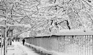 Vrydag 22 Januarie, 2016: Gramercy Park, New York City