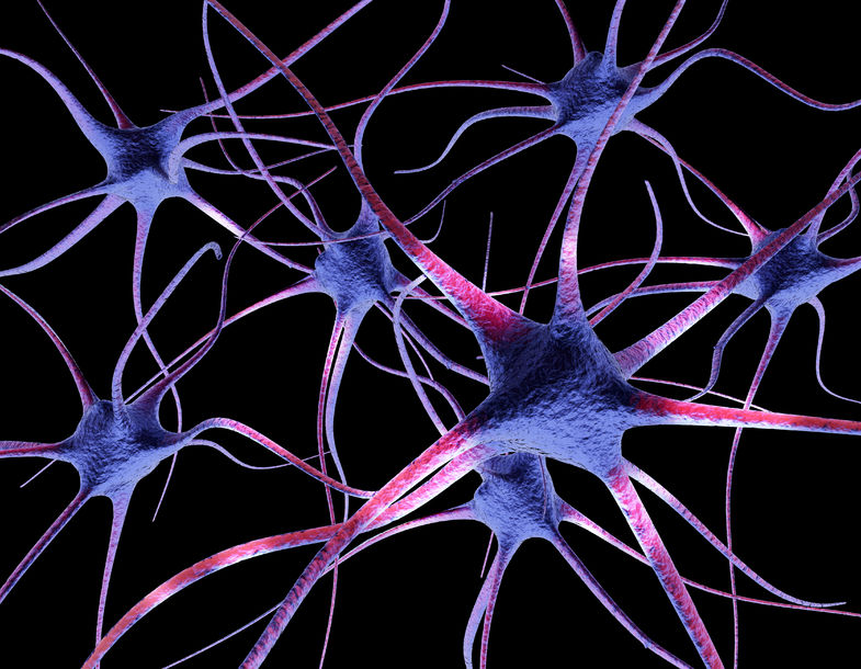 Verbeter jou breinkapasiteit