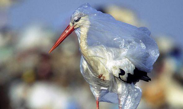 Plastiek versmoor ons oseane